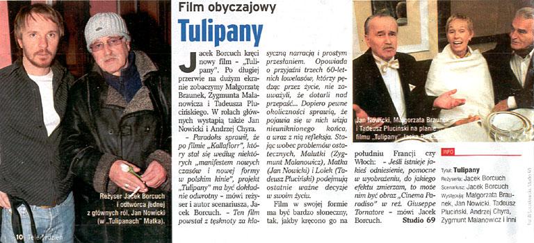 Tulipany - TeleTydzień